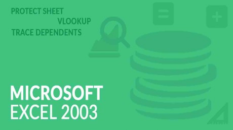 Learn MS Excel 2003 Online – in Hindi